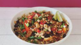 Nasi-goreng-Wakker-Dier